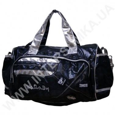 Заказать сумка молодёжная спортивная, отделка-серебро Wallaby DN476
