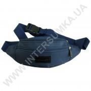 поясная сумка на 2 отдела Wallaby 2902 синяя