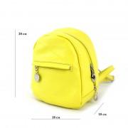 Женский рюкзак из натуральной кожи Borsacomoda 835029